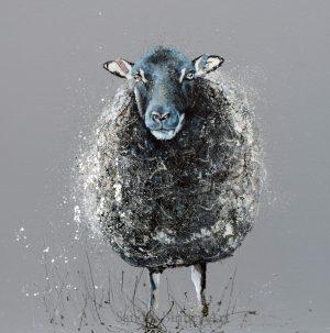 A Wooly Coat