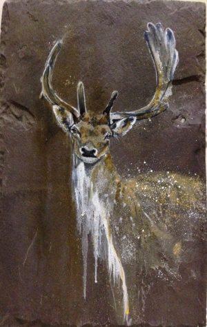Slate Deer