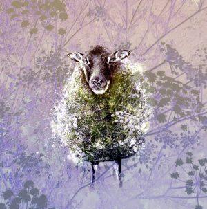Digital art cow parsley print